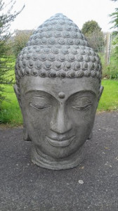 Tête Bouddha 80cm