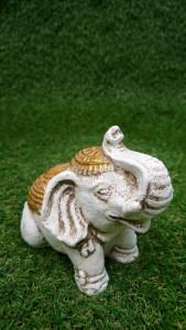 Eléphant blanc doré 10 cm