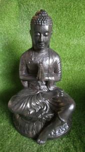 Bouddha en lotus et prière