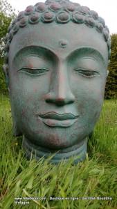 Tête Géante Bouddha